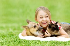 little girl with a dog and a cat on a green grass